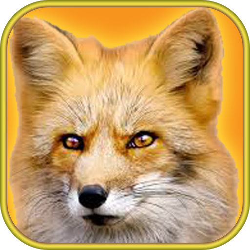 Wild Fox Sim Adventure