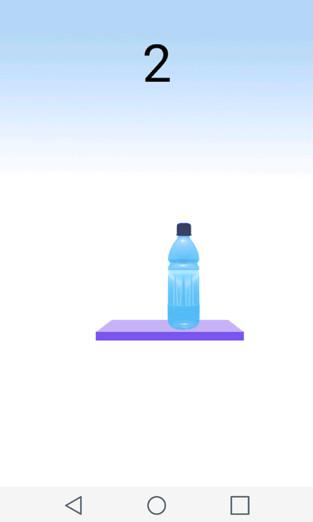 Bottle Flipping Game