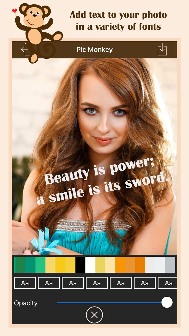 PhotoArt - PicMonkey Image Editor | iOS