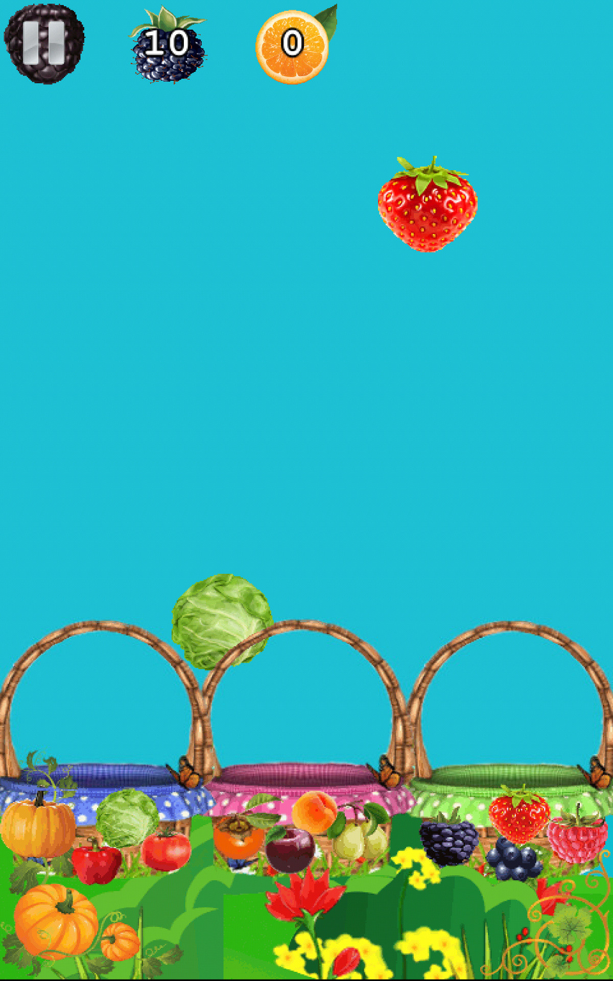 Accel Fruit