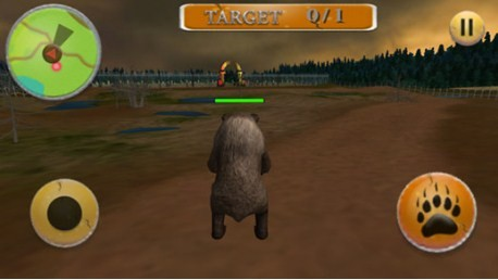 Wild Angry Animal Bear simulator 3d