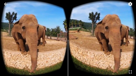 360 VR Elephant - Nature VR Apps for Kids
