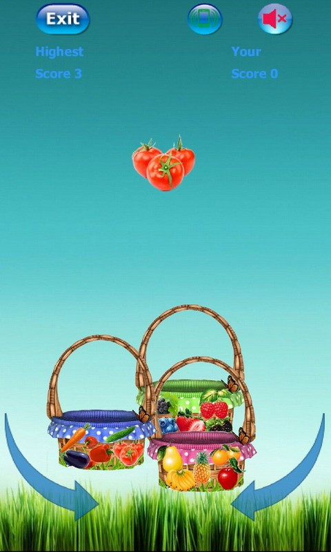 Bucket Fruit