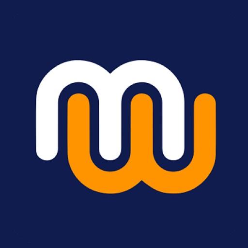 Mowize -Finance Management App