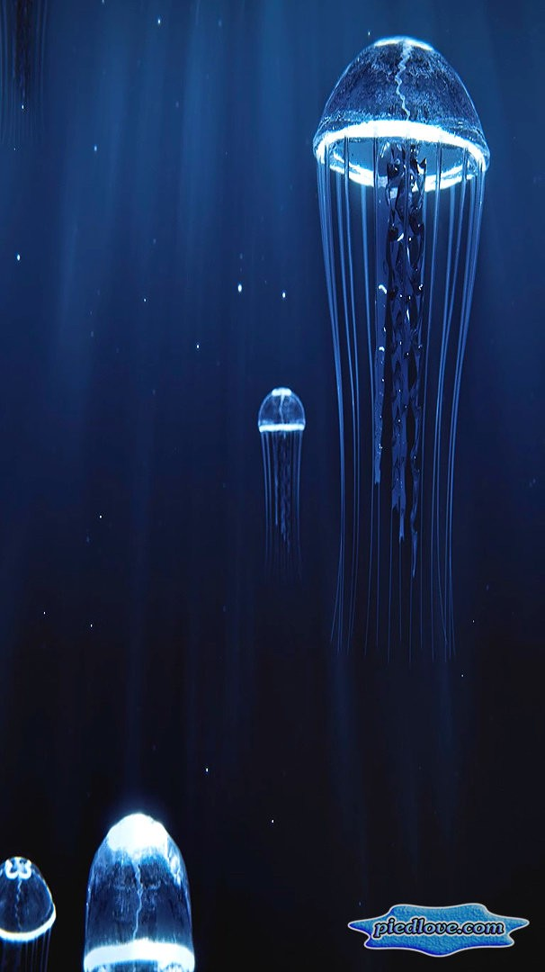 Precious Jellyfish 3D Hovering Under Deep Blue Sea
