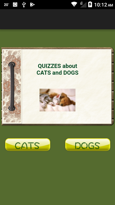 Quiz Cats And Dogs