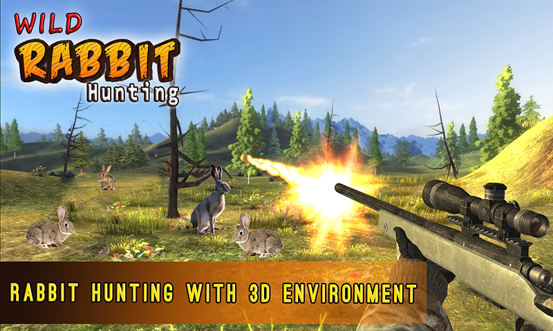 Rabbit Hunting Challenge