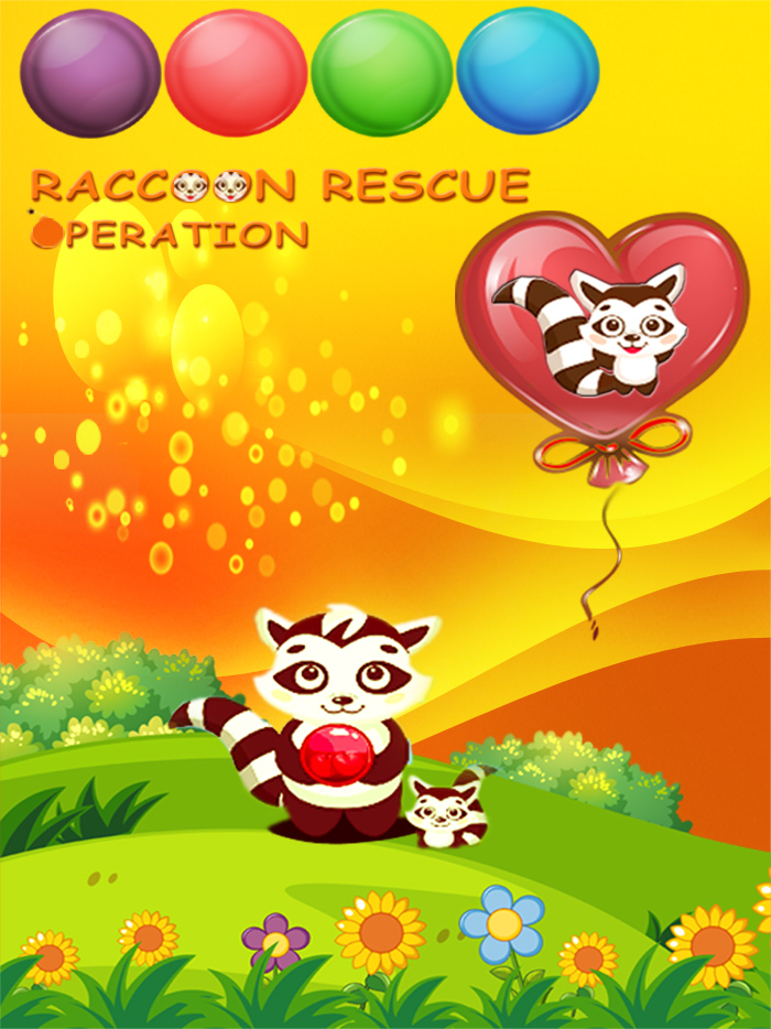 Raccoon Rescue Operation