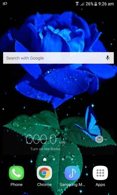 Blue Rose Beauty LWP
