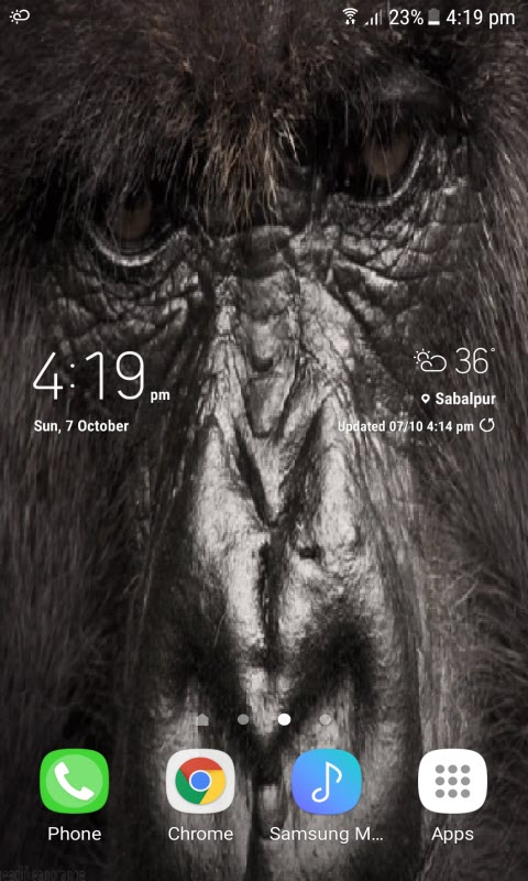 Gorilla Eyes Live Wallpaper