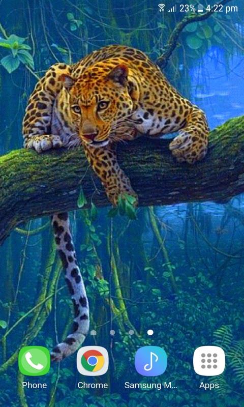Jungle Leopard Live Wallpaper