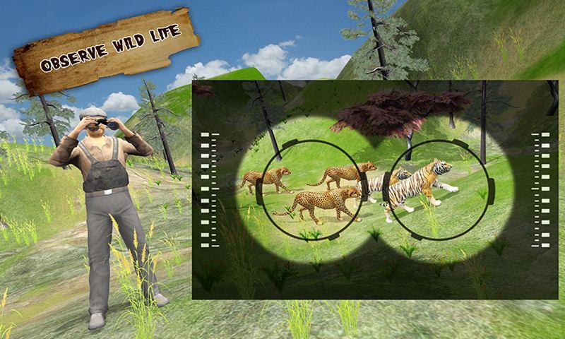 Safari Survival Animals Photographer
