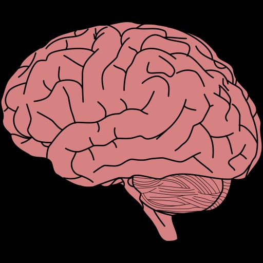 Infartos Cerebrales
