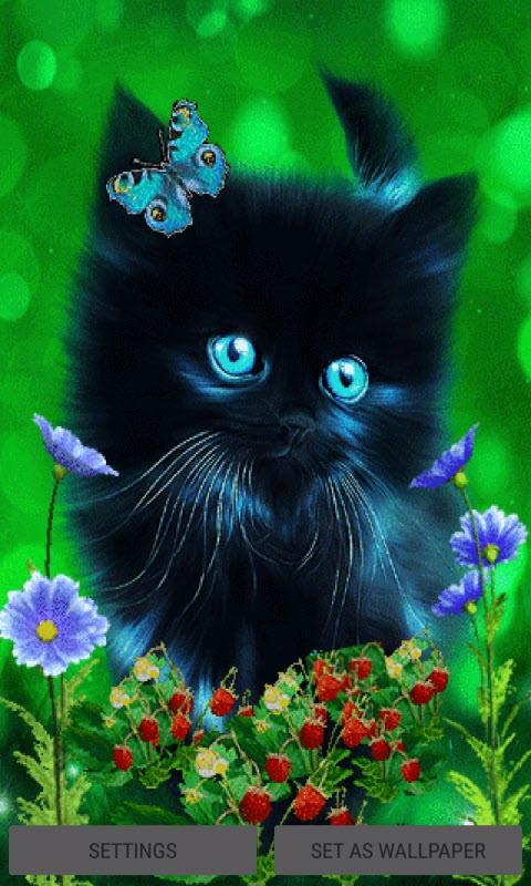 Butterfly Cat Live Wallpaper