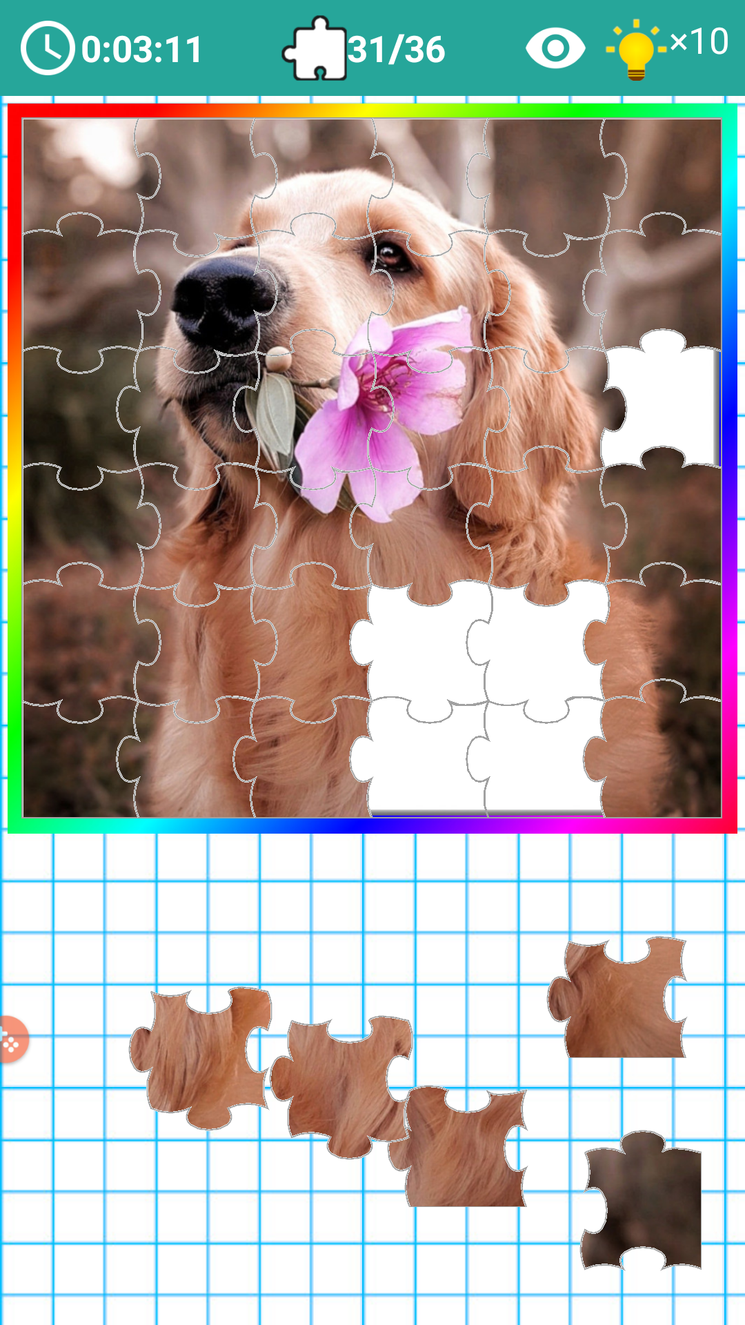 PICK and FIT JIGSAW 2019