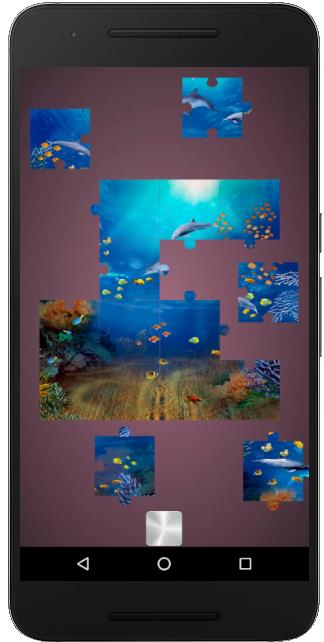 Dolphin puzzle games for adults and kids