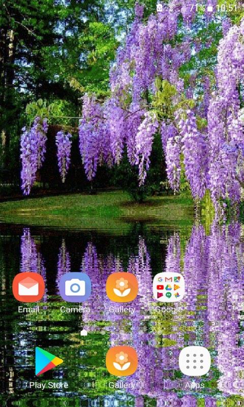 Purple Flower Garden LWP