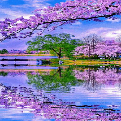 Purple Flowers Lake LWP