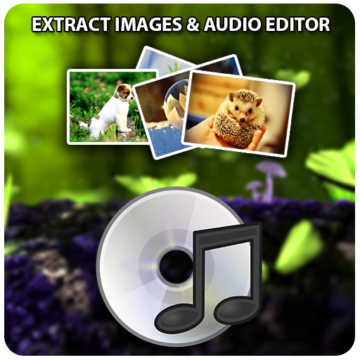 Video to Audio -image extract