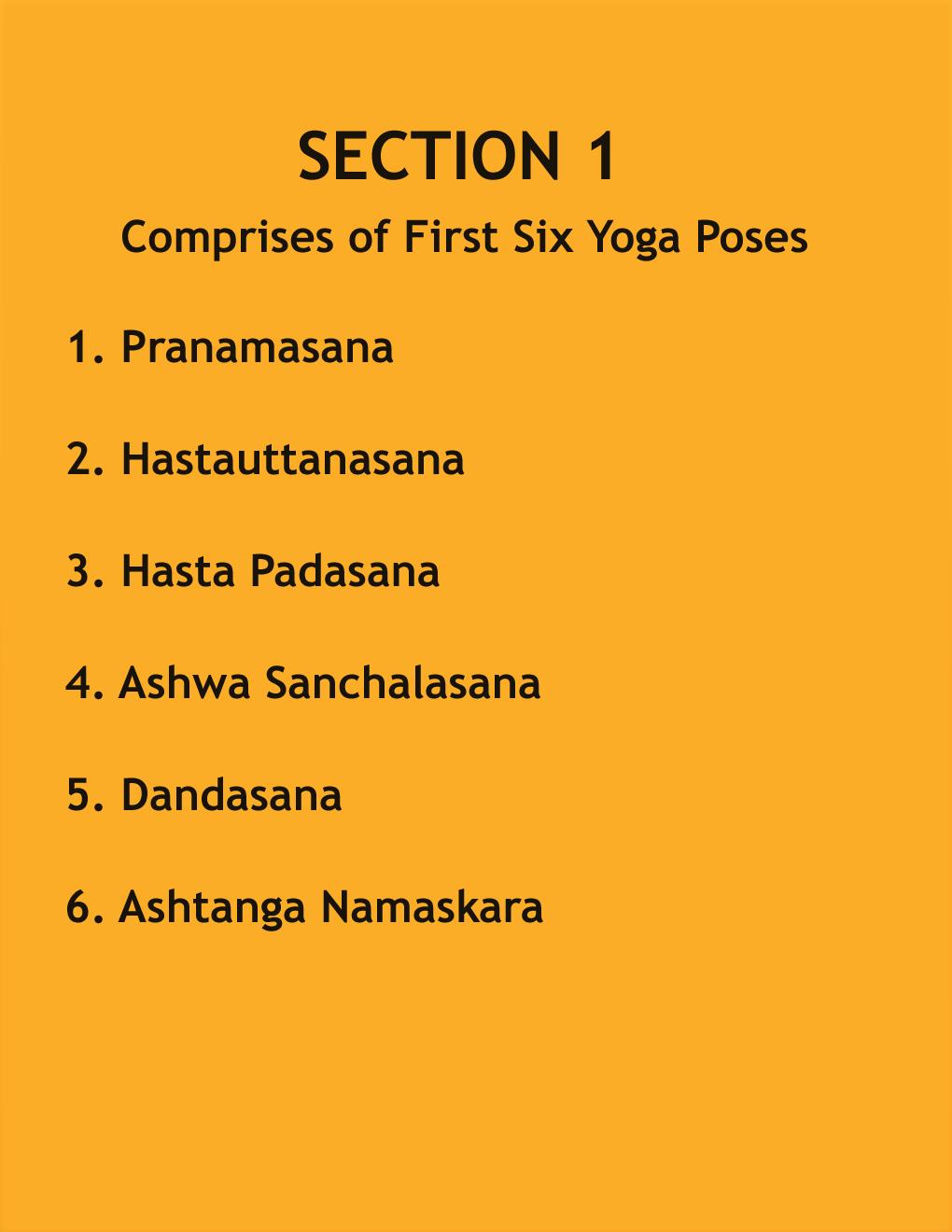 Surya Namaskar Yoga Poses