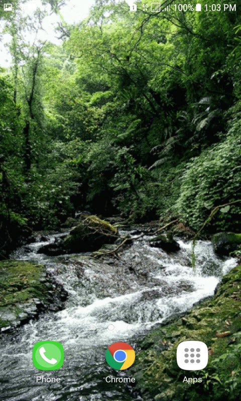 Green Forest Water LWP