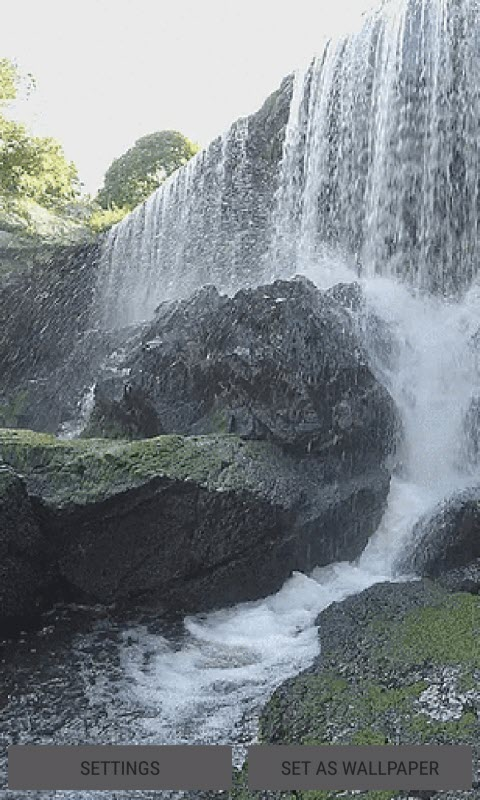 Summer Waterfall Live Wallpaper