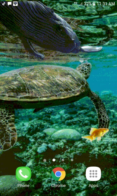 Under Ocean Live Wallpaper