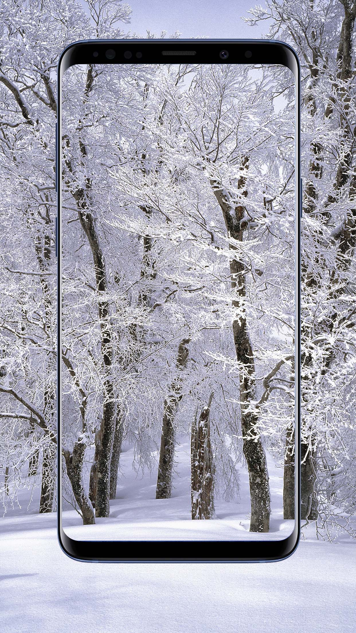 Winter Wallpapers and Backgrounds