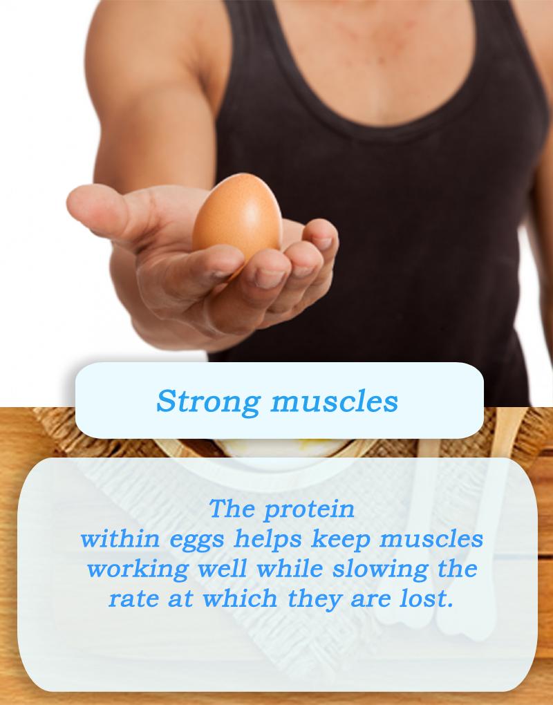 boiled egg diet - diet plan weight loss - egg diet