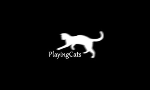 PlayingCats
