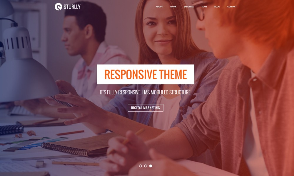 Sturlly | Responsive OnePage Multipurpose Template