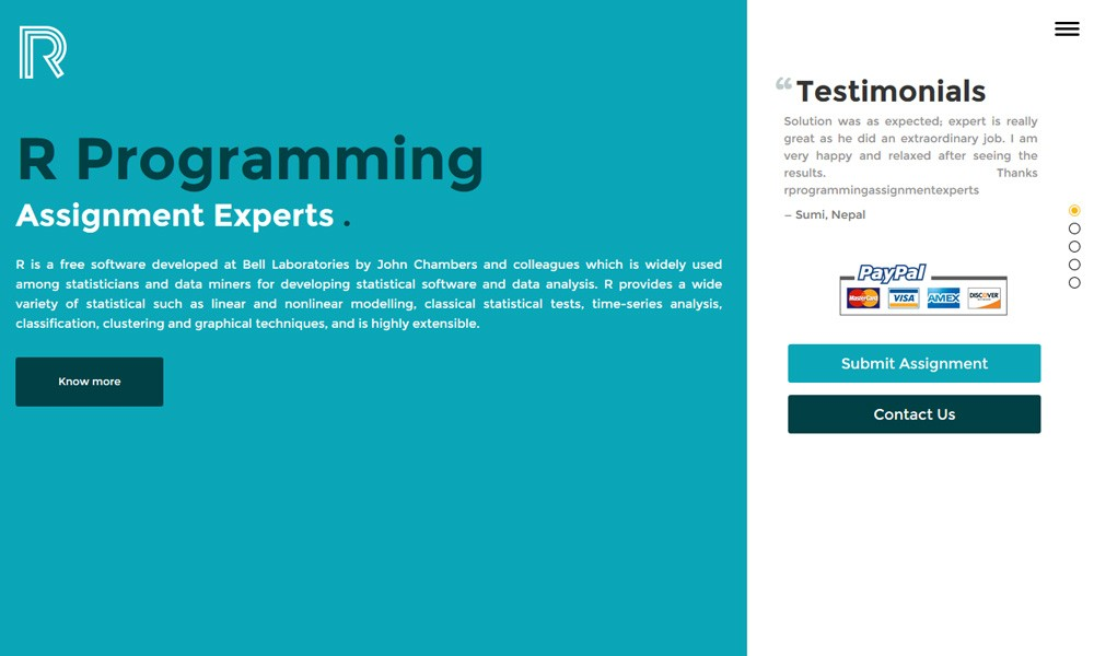 r programming assignment experts