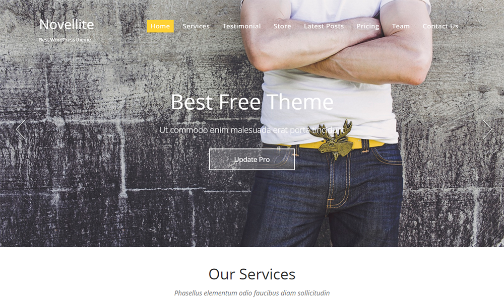 Novellite – One Page WordPress Theme