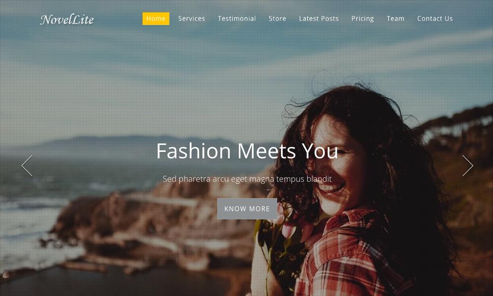 Novellite – One Page WordPress Theme