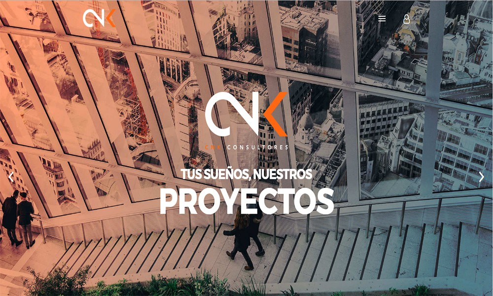 cnk consultores