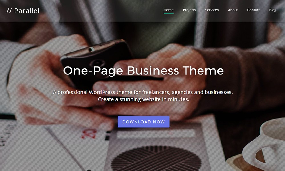 Parallel One-page Multipurpose Theme