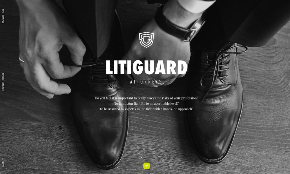 Litiguard