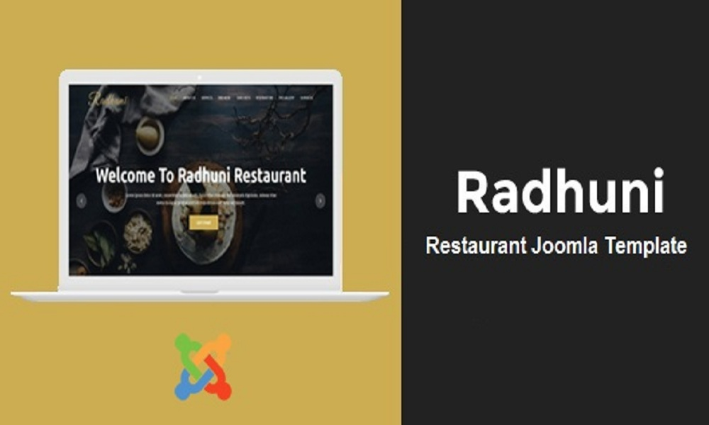 Radhuni - Multipurpose Business Joomla Theme With Page Builder