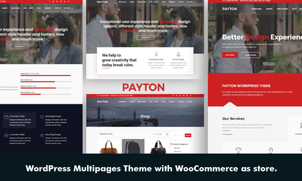 Payton - Multipurpose Responsive WordPress Theme
