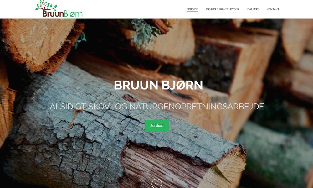 Bruun Bjørn