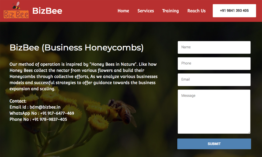 Bizbee - Business Consulting