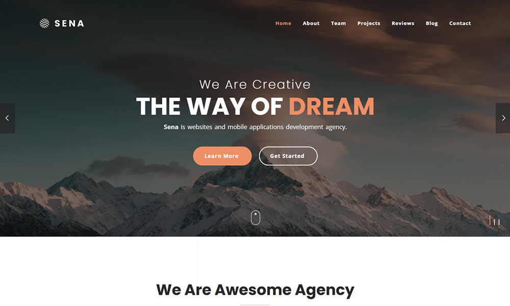 Sena - Responsive One Page Parallax Template