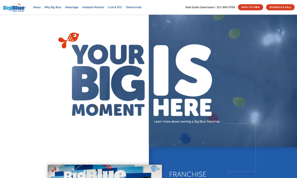 Big Blue Swim School - Franchise