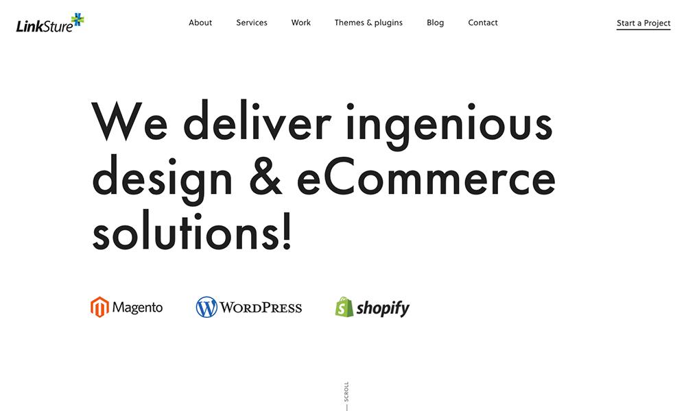 LinkSture - A digital media design & development agency