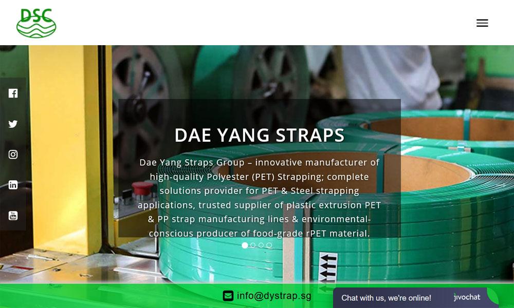 Dy Strap | RPET